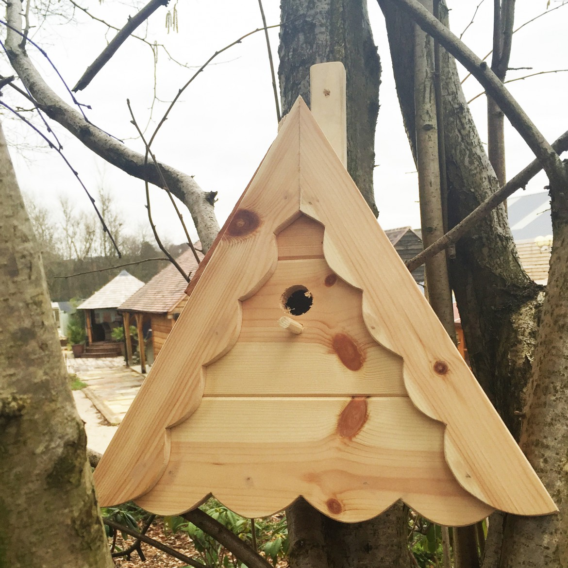 It's National Nest Box Week!